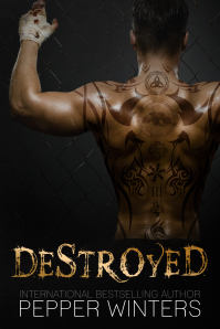 Destroyed E-Book Cover (2) (1)